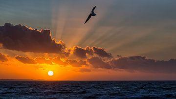Noordzee zonsondergang van