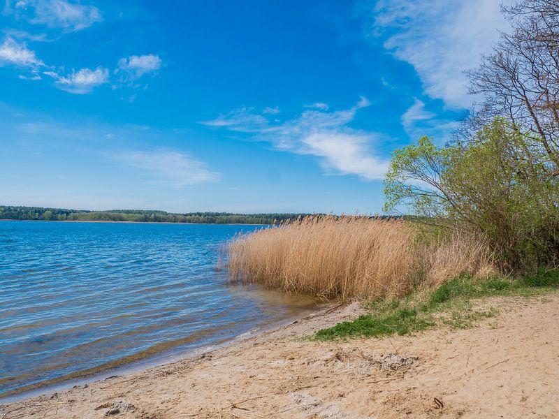 See an der Mecklenburgische Seenplatte von Animaflora PicsStock