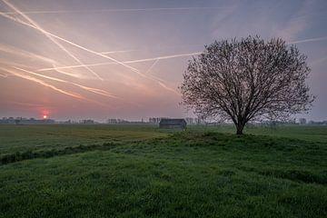 Weiland met boom en schuur bij zonsopkomst 05 von Moetwil en van Dijk - Fotografie