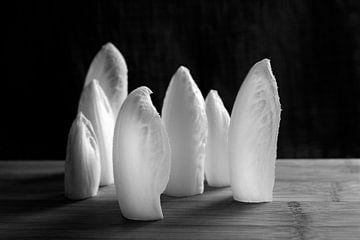 Stattliche Chicorée Blatt auf Holz | schwarz und weiß von ellenklikt