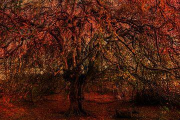 Meervoudige belichting boomstam met kale takken van Dieter Walther