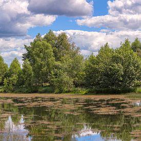 Nationaal park Hoge Veluwe Nederland van Eric Wander
