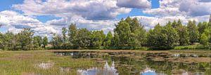 Nationaal park Hoge Veluwe Nederland
