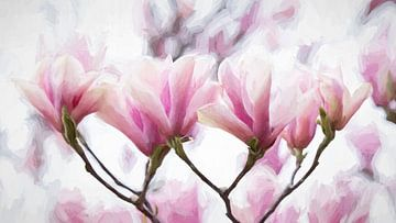 Magnolie malerisch von Francis Dost