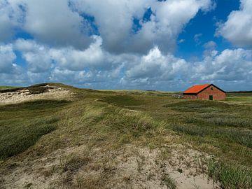 Landschap Texel van Louis Kreuk