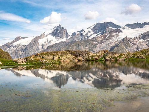 De berg Meije in de Écrins in de alpen