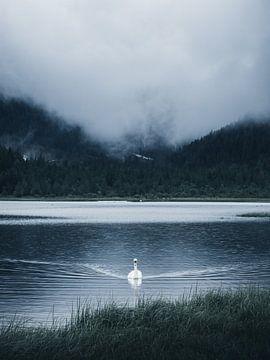 Regentag am Toblacher See von Dylan Shu