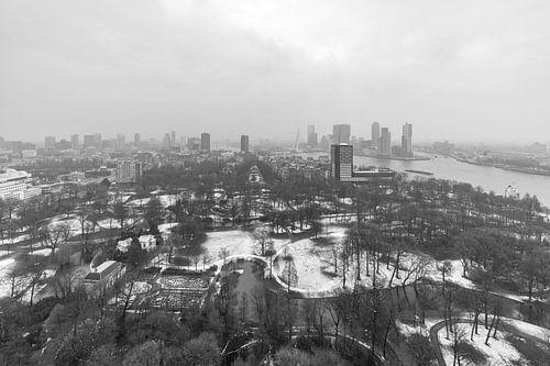 Winter in Het Euromastpark in Rotterdam