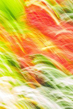 Flammen von Jan Peter Jansen