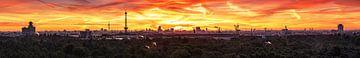 Berlijn Mega Skyline Panorama van Frank Herrmann
