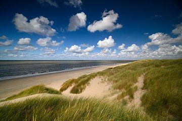 Ciel hollandais dans les dunes avec vue sur la mer sur Ellen van den Doel