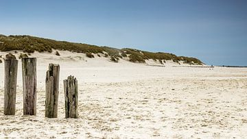Ameland strand met golfbrekers von Tony Buijse