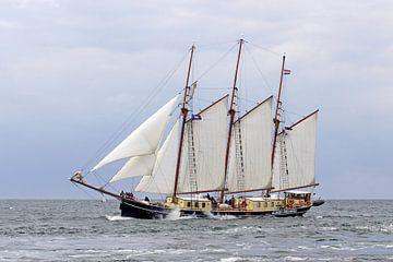 Schoner Albert Johannes van