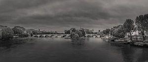 Pont Neuf in Parijs van Toon van den Einde