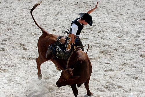 Rodeo Cowboy