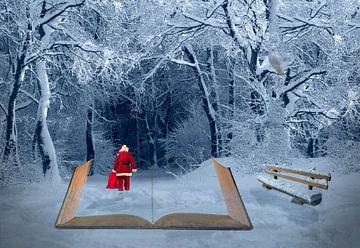 Weihnachtlicher Winterspaziergang van Ursula Di Chito
