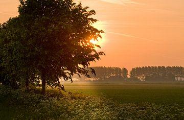 Coucher de soleil sur la campagne.