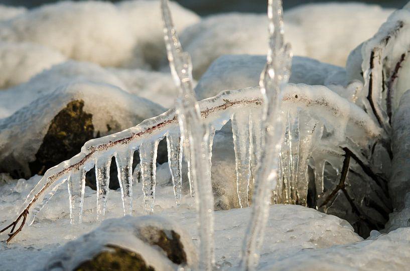 Bevroren takken  van Erik van Riessen