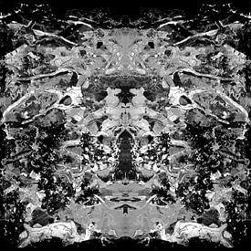 ZWART-WITTE ABSTRACTIE-1 van Pia Schneider