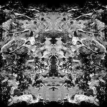 BLACK AND WHITE ABSTRACTION-1 von Pia Schneider