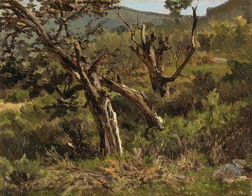 Carlos de Haes-Oude Baumlandschaft auf dem Berg, Antike Landschaft