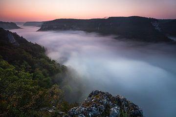 Brouillard dans le canyon de la vallée du Danube sur Jiri Viehmann