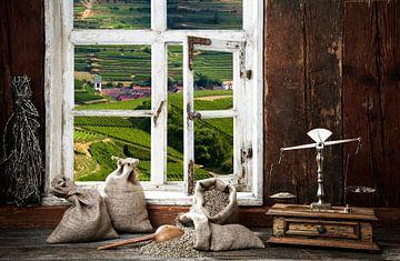 Salon de la ferme, vue par la fenêtre sur Jürgen Wiesler