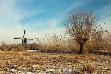 Windmühle in der Nähe von Lexmond, Niederlande von Peter Bolman