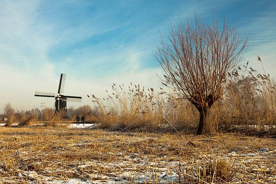 Molen nabij Lexmond, Nederland van Peter Bolman