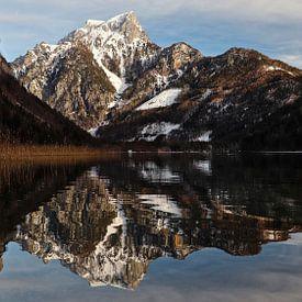 Leopoldsteinersee - Stiermarken - Oostenrijk van Felina Photography