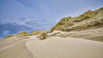 strand en duin tijdens een storm van eric van der eijk