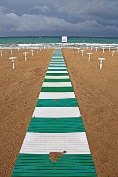 Loopplank Groen wit Groen wit van Homemade Photos