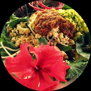Een Tropische raw food lunch van Daphne Wessel