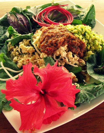 Een Tropische raw food lunch