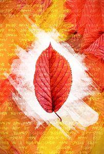 Herfstbladeren Rood