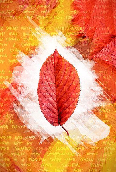 Herfstbladeren Rood van Sharon Harthoorn