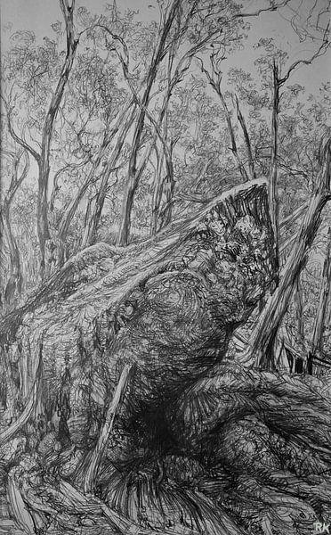 Zwart wit Australische bos van KB Prints