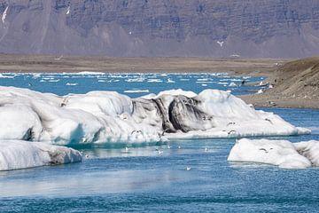 Eisschild bei Jokulsarlón in Island von Reis Genie