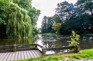Park von Fatima Maria Mernisi