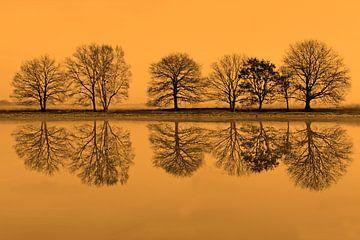 rij bomen spiegelt in het water von Ronald Jansen