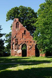 Greifswald : Klosterruine Eldena
