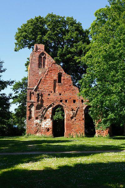 Greifswald : Klosterruine Eldena von Torsten Krüger