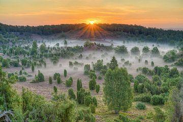 Zonsopgang over de Totengrund in de Lüneburger Heide van Michael Valjak