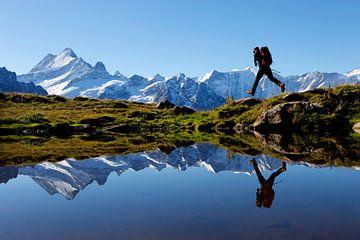 Berner Oberland von