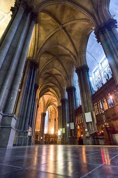 Kathedraal van Rijsel van Mark Bolijn