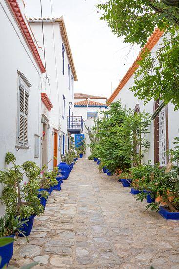 Blauwe Plantenbak