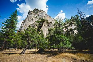 Yosemite rots van Erik Bouma