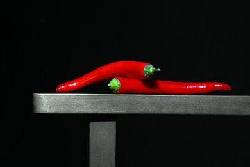 Chili Guo van Gerhard Albicker