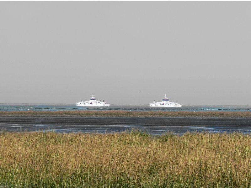 30. Buitendijks gebied, Noarderleech, veerboten Oerd en Sier. van Alies werk