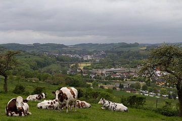 Uitzicht over Luxemburgs landschap von